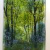 Bluebell Woods, fused Bullseye glass, powders, Frits and glass paints.