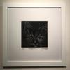 Cat Flap cat. Limited edition 1/50. Encaustic wax. Phil Madley £125. Framed.