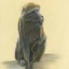 """""""On the lookout"""" Pastel Framed 21.5x18 £250.00"""