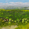 View across Aylesbury Vale by Emma Williams 2020 oil on canvas