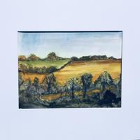 From the sheep field, watercolour & ink