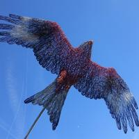 """""""Red Kite in Flight"""" in Wire by Lindsay Waring"""
