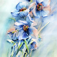 Blue Poppy - Contemporary Watercolour painting