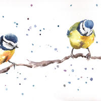 blue tits in conversation  Contemporary Watercolour painting