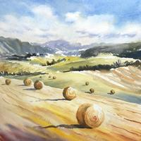 hayfields  -  Contemporary Watercolour painting