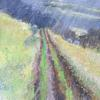 Hazy Sunshine, , Sheep Grazing, Misty Day. Acrylic and mixed media on canvas. 20 x 20 ins ( 51 x 51 cm)
