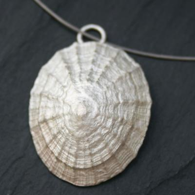 Limpet Shell Pendant (Large)