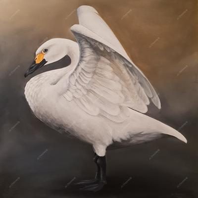 Bewick Swan by Jo Chesney