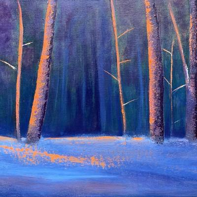 The last glow of orange light at sunset through snow covered woods.